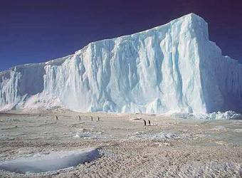 El deshielo de los icebergs antárticos altera la actividad biológica de su entorno