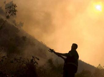 Estado de emergencia en Italia por los incendios forestales