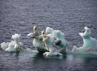 La 'guerra del Ártico'