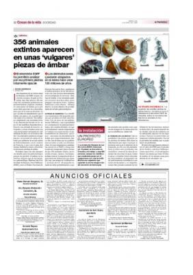 356 animales extintos aparecen en unas 'vulgares' piezas de ámbar