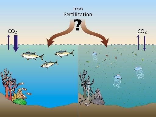 Polarstern ya empezó a fertilizar el océano (LOHAFEX)